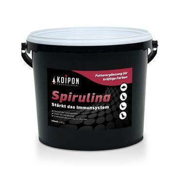 Koi Food Spirulina 150g Feed Supplement from KOIPON