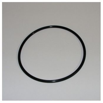 O-Ring SI 100 x 4 SH45