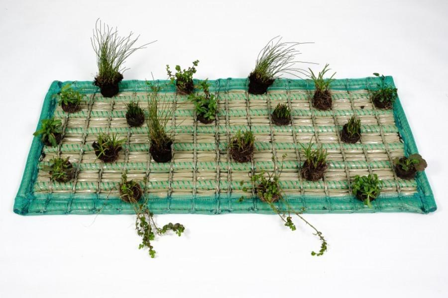 Pflanzinsel-Set 125 x 55cm rechteck inkl. 20 Pflanzen