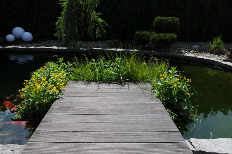 schwimmende pflanzinsel mit winterharten pflanzen. Black Bedroom Furniture Sets. Home Design Ideas