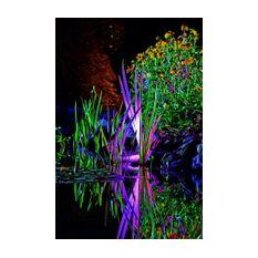 ProfiLux Garden LED RGB  Image 4