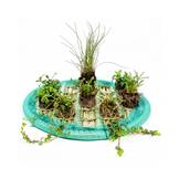 Floating Plant Islands Set 45cm round incl. 8 plants