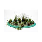 Floating Plant Islands Set 60cm round incl. 15 plants