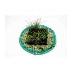 Pflanzinsel-Set 60cm rund inkl. 15 Pflanzen  Bild 2