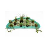 Floating Plant Islands Set 80cm semicircular incl. 12 plants
