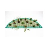 Floating Plant Islands Set 120cm semicircular incl. 15 plants