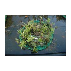 Schwimminsel Teich rund 45cm - für 6 bis 8 Pflanzen  Bild 3