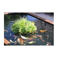 Schwimminsel Teich rund 120cm - für 20 bis 25 Pflanzen  Bild 3