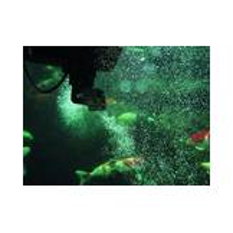 Oase SwimSkim 50  Bild 3