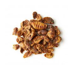 Silkworms Koi Snack by KOIPON  Image 2