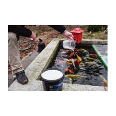 Karbonathärte erhöhen im Teich - KOIPON Härte Plus  Bild 3