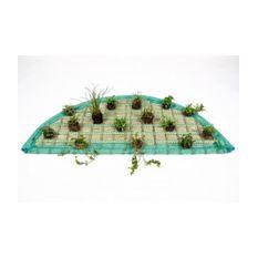 Pflanzeninsel-Set 120cm halbrund inkl. 15 Pflanzen