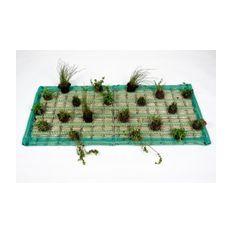 Pflanzeninsel-Set 125 x 55cm rechteck inkl. 20 Pflanzen
