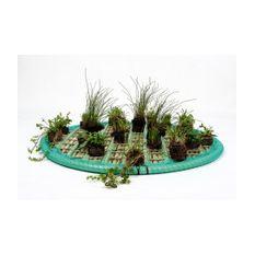 Pflanzeninsel-Set 60cm rund inkl. 15 Pflanzen