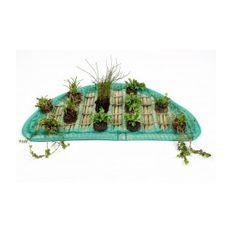 Pflanzeninsel-Set 80cm halbrund inkl. 12 Pflanzen