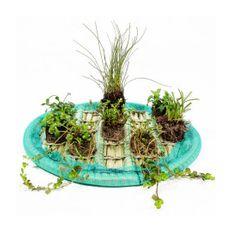 Pflanzinsel-Set 45cm rund inkl. 8 Pflanzen