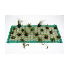 Pflanzinsel-Set rechteck 40 x 80 cm inkl. 15 Pflanzen